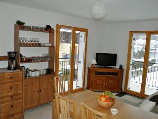 Etoile - Comfy & Spacious - - Haute-Savoie vacation rentals