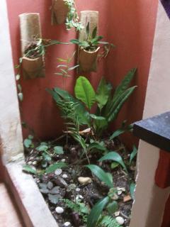Casa do Forro Family em Caraiva - Trancoso vacation rentals