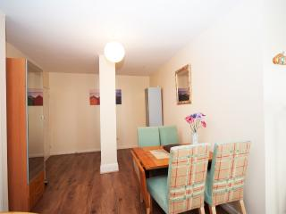1 bedroom Apartment with Internet Access in Portsmouth - Portsmouth vacation rentals