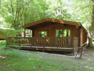 Kenwick Woods Lodge nr.33, Kenwick Woods, Louth, Lincolnshire LN11 8NP - Louth vacation rentals