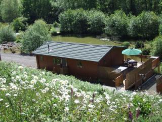 Cozy 2 bedroom Lodge in Buckland Brewer - Buckland Brewer vacation rentals