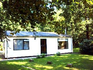 2 bedroom Bungalow with Television in Winterswijk - Winterswijk vacation rentals