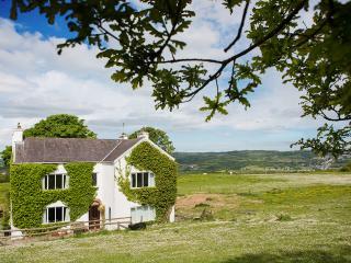 Dan-y-Cwarre Farmhouse - Llanelli vacation rentals