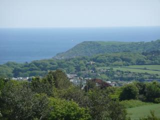 Ocean View - Saint Austell vacation rentals