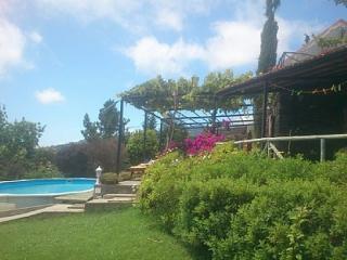 Ocean View Cottage - Arco da Calheta vacation rentals