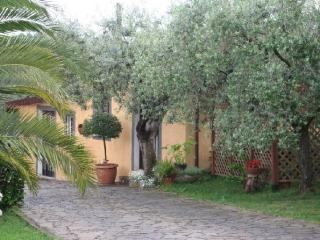 Comfortable apartment for  holiday - Rome vacation rentals