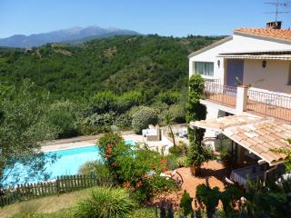 3 bedroom Villa with Internet Access in Céret - Céret vacation rentals