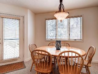 Perfect Apartment with Dishwasher and Deck in Stratton Mountain - Stratton Mountain vacation rentals