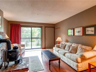 Beautiful Condo with Deck and Dishwasher - Pittsfield vacation rentals