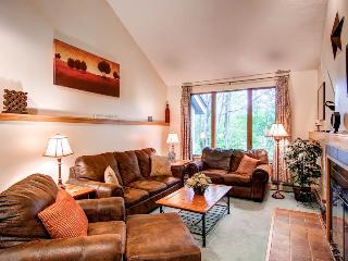 The Woods Resort & Spa Townhouse A8 - Killington Area vacation rentals