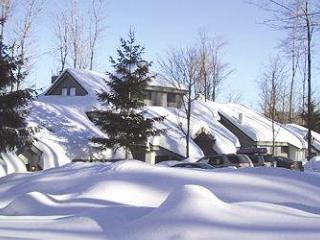 The Woods Resort & Spa Townhouse B3 - Killington Area vacation rentals