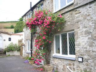 1 Croyde Manor Mews,  charming cottage in  Croyde - Croyde vacation rentals