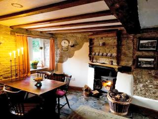 Blodeuwedd Cottage - Kington vacation rentals