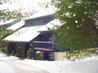 Features at a glance - North Conway vacation rentals