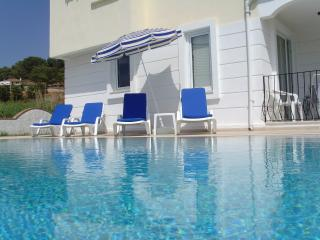 Villa in Koca Calis near Fetiyhe -