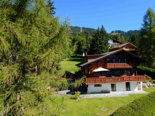 Chalet Melchior ski in / ski out Central Villars - Villars-sur-Ollon vacation rentals