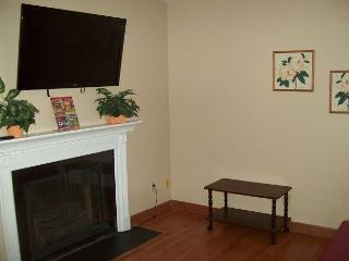 One Bedroom Condo in the Heart of Gatlinburg (Unit 315) - Gatlinburg vacation rentals