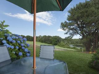 Ocean Edge Two Bedroom Patio Loft Home - Brewster vacation rentals