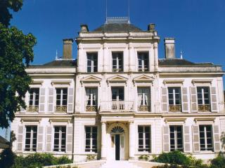 Nice Chateau with Internet Access and Television - Chateau du Loir vacation rentals