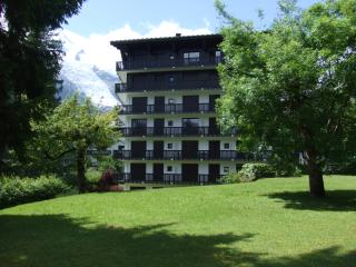 Large Luxury Apartment By Gondola In Chamonix - Chamonix vacation rentals