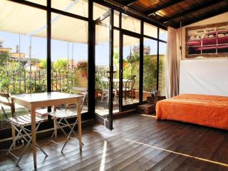 Artistic Loft Spectacular Terrace historic center! - Rome vacation rentals
