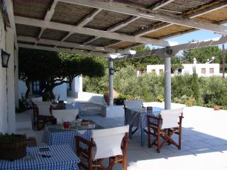 Bright 6 bedroom Leros Farmhouse Barn with Internet Access - Leros vacation rentals