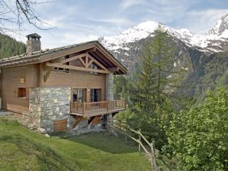 Spacious apartment in traditional private chalet - Savoie vacation rentals