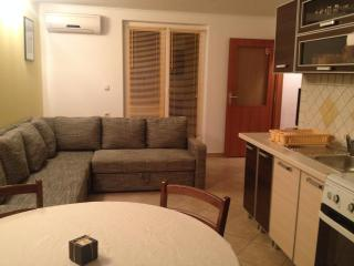 Superb apartment on Island of Pag - Zubovici vacation rentals