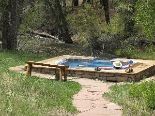 Creekside Hot Springs Cabin - South Central Colorado vacation rentals