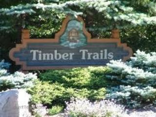 Near Pocono Raceway, skiing, Camelbeach and more! - Pocono Pines vacation rentals