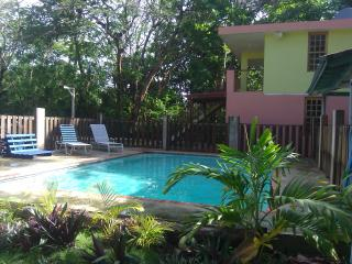Del Mar Eco-Lodging Apartments:  Tinglar - Luquillo vacation rentals