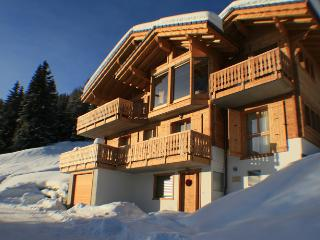 Bright Thyon Chalet rental with Internet Access - Thyon vacation rentals