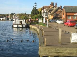 Annex 1 min  Wroxham, private southerly garden - Wroxham vacation rentals