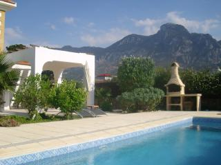 Nice Villa with Internet Access and A/C - Karsiyaka vacation rentals