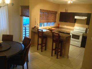 Perfect downtown location - Guerrero vacation rentals