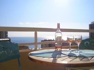 Apartment Bougainvilliers - Monte-Carlo Supérieur - Beausoleil vacation rentals