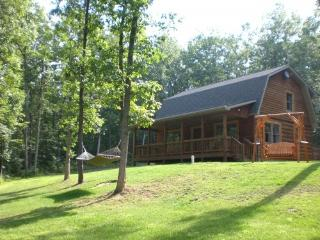 Wild Vines Cabin Vacation Home Rentals, Romantic - Luray vacation rentals