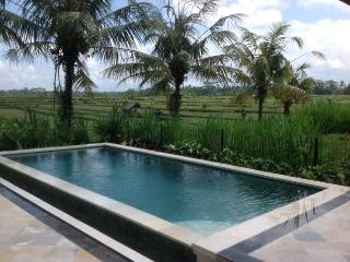 Ubud Rice Field Villa, Private Retreat With Views - Sterling vacation rentals
