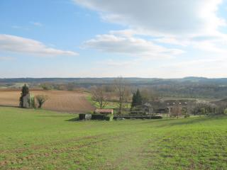 Beautiful Gite with Internet Access and Dishwasher - Castelnau-de-Montmiral vacation rentals