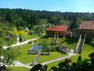 Apartments and wellness center Korošec Mozirje - Mozirje vacation rentals