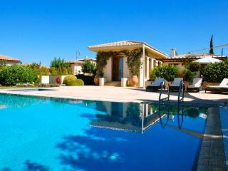"Villa Rhea ""with Private, Heated Overflow Pool"" - Kouklia vacation rentals"
