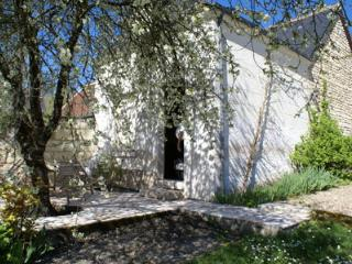 Hillside cott in village with river views, garden - Bourre vacation rentals