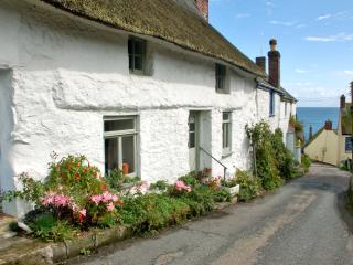 Comfortable Cottage with Internet Access and Satellite Or Cable TV - Cadgwith vacation rentals