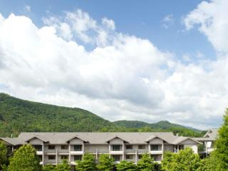 Mountain Getaway at 5 Star Resort - Pigeon Forge vacation rentals