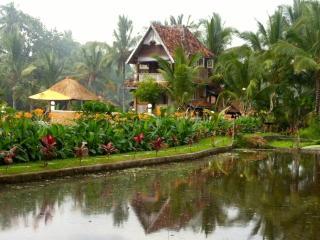 The Rice Joglo - Ubud vacation rentals