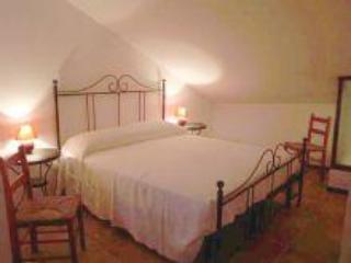 cà borgo vecchio: la rosa rossa apartment - Vignale Monferrato vacation rentals