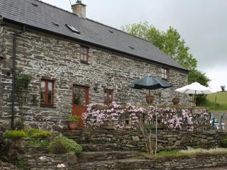 3 bedroom Cottage with Internet Access in Rhydlewis - Rhydlewis vacation rentals