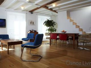 THE LOFT GOLD - Paris vacation rentals
