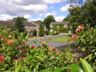 Dalegarth, Buckden - Buckden vacation rentals