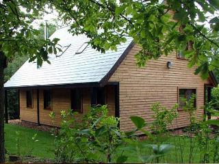 WOOTTON, quality woodland lodge with hot tub, close to Alton Towers, Ref 913349 - Staffordshire vacation rentals